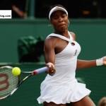 Venus Williams Pic